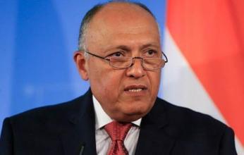 وزير الخارجية المصري ونظيرته التنزانية يبحثان التعاون بين البلدين